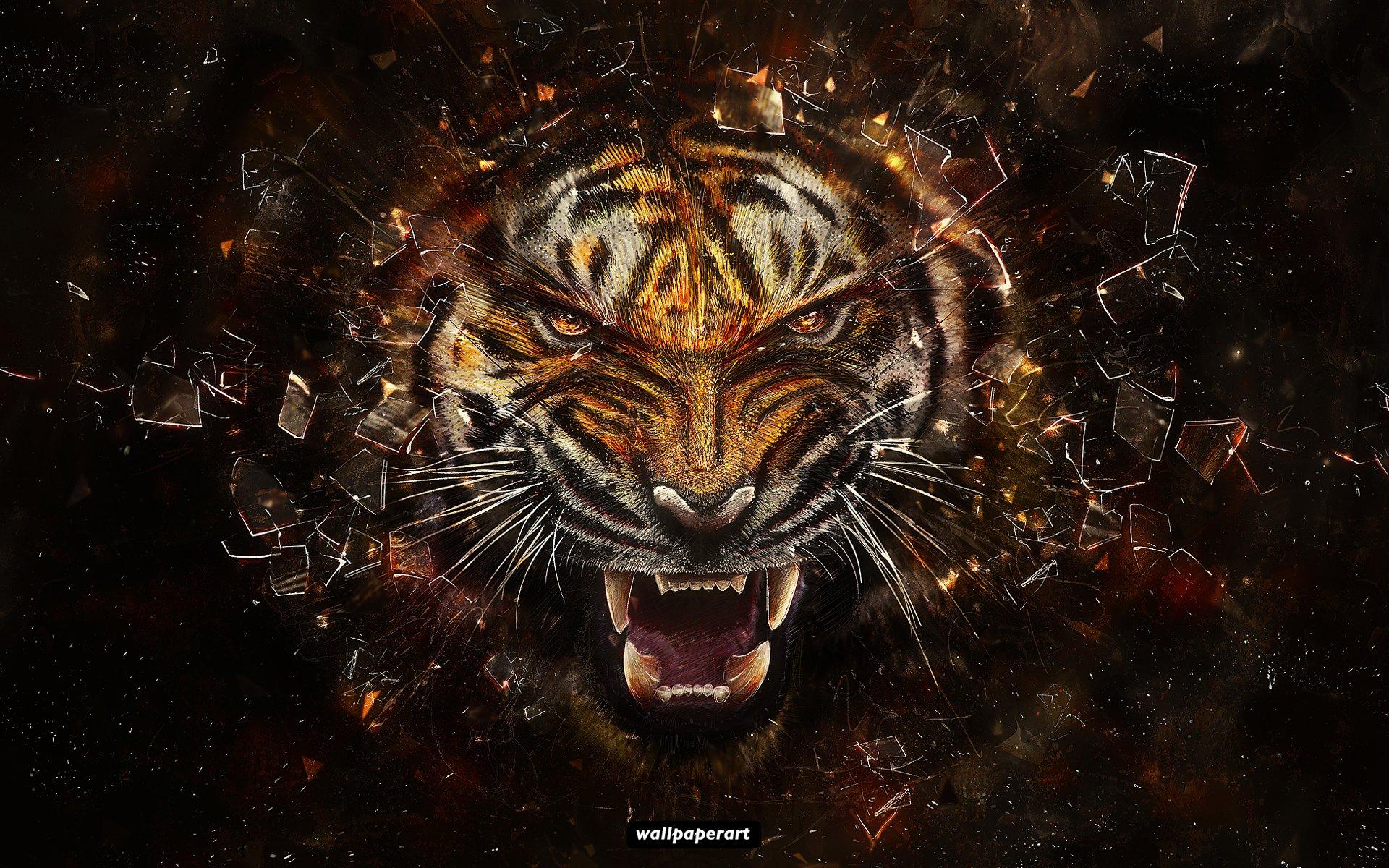 обои на рабочий стол, фото, скачать, тигр