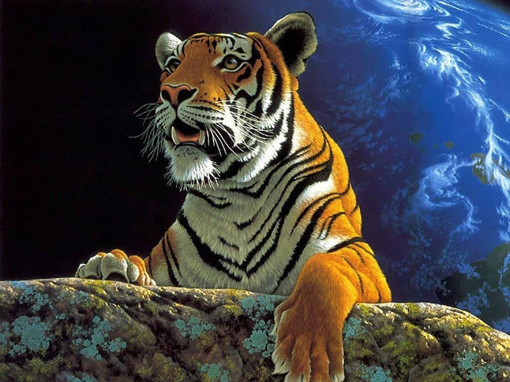 тигр фото обои для рабчоего стола, скачать