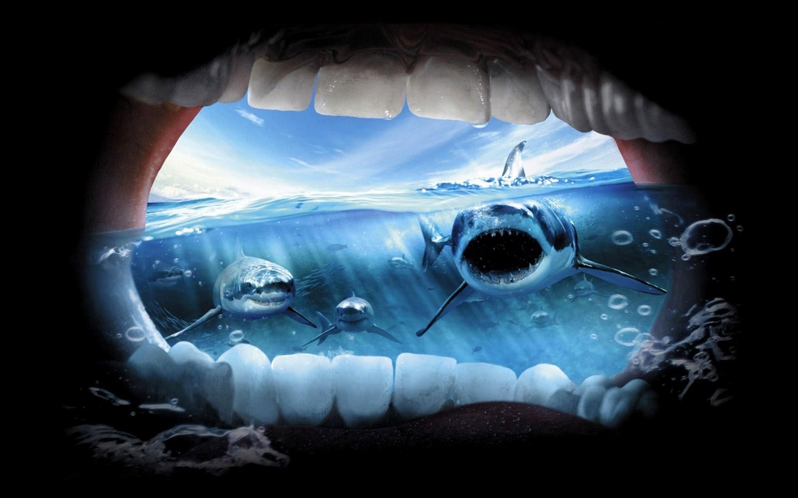 крик, зубы, акула, фото, обои для рабочего стола