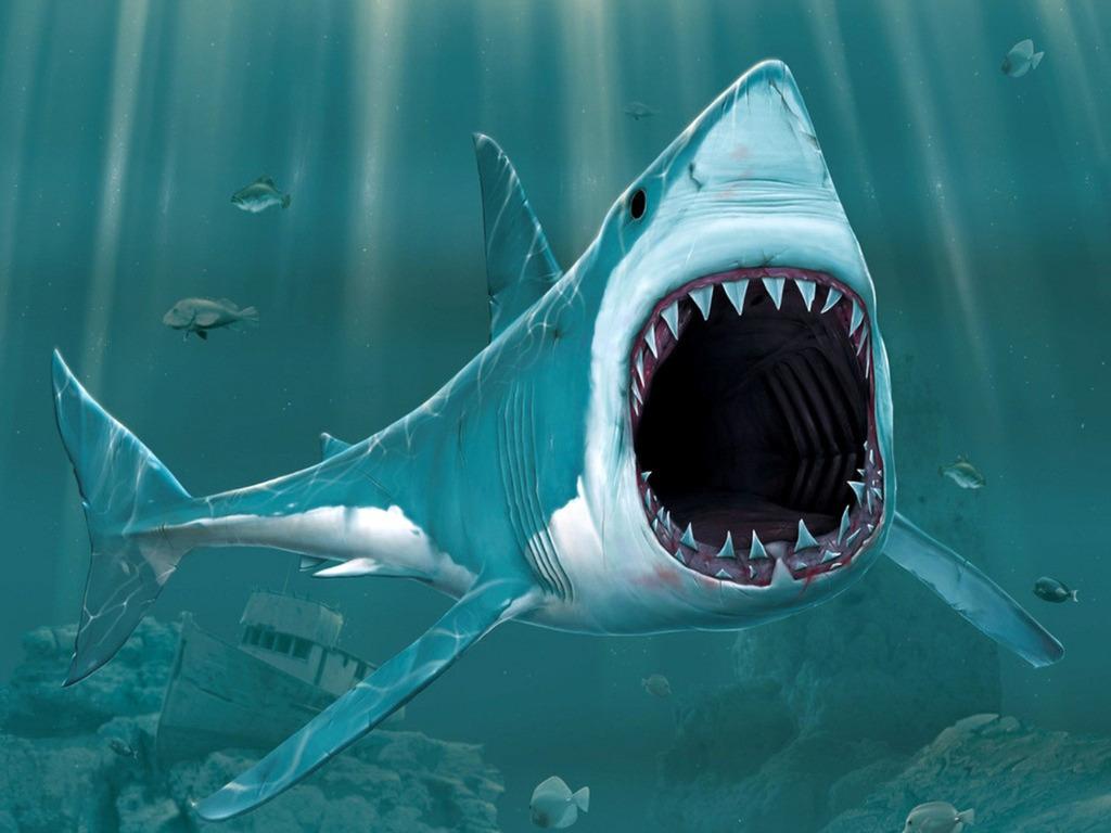 большая акула, пасть, скачать фото, обои для рабочего стола, челюсти