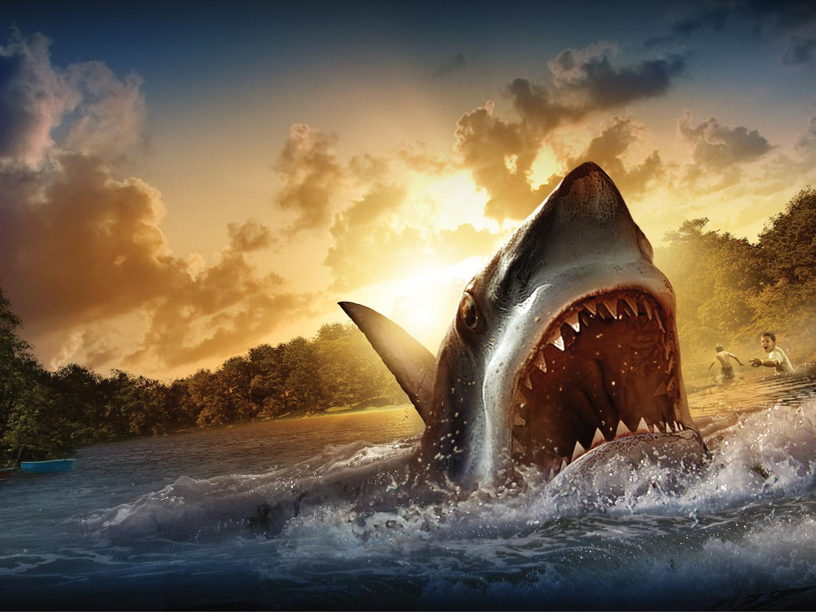 красивый рисунок, акула, обои для рабочего стола, скачать фото