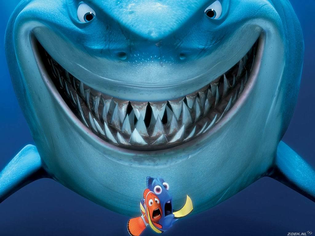 Немо, рыбка и акула, скачать фото, обои для рабчего стола