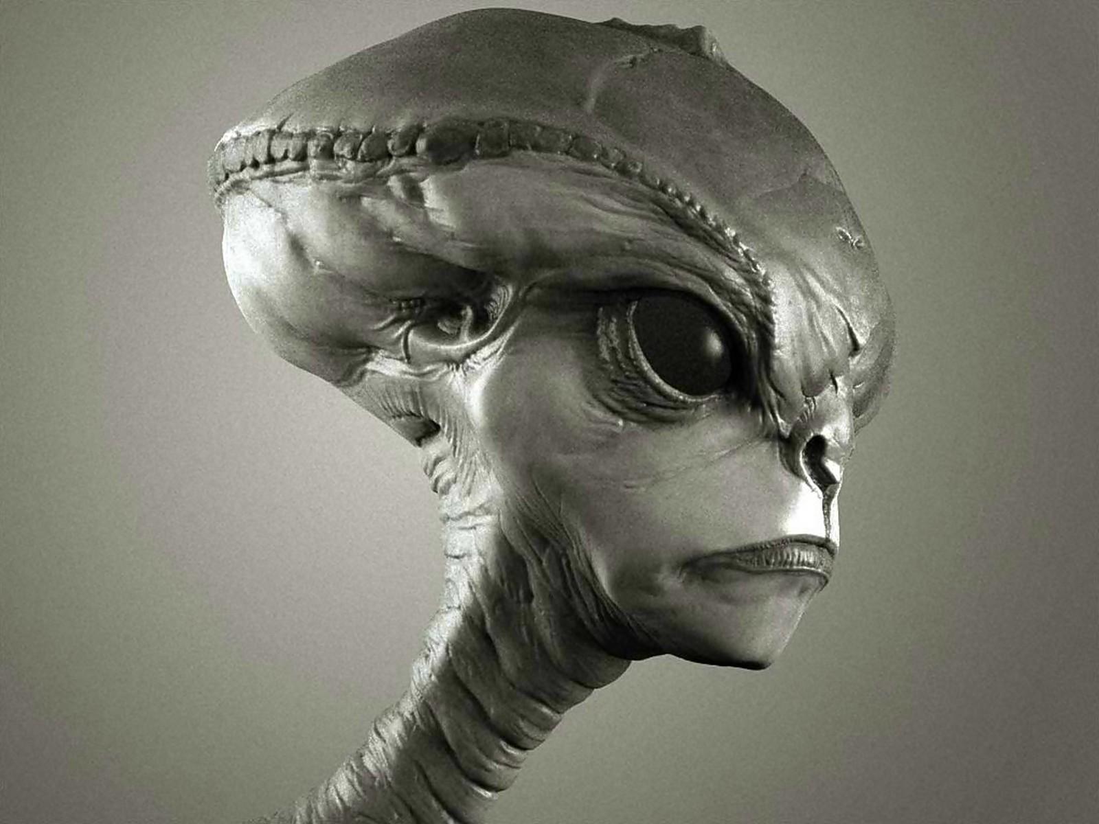 голова пришельца, инопланетянин, скачать фото, обои для рабочего стола