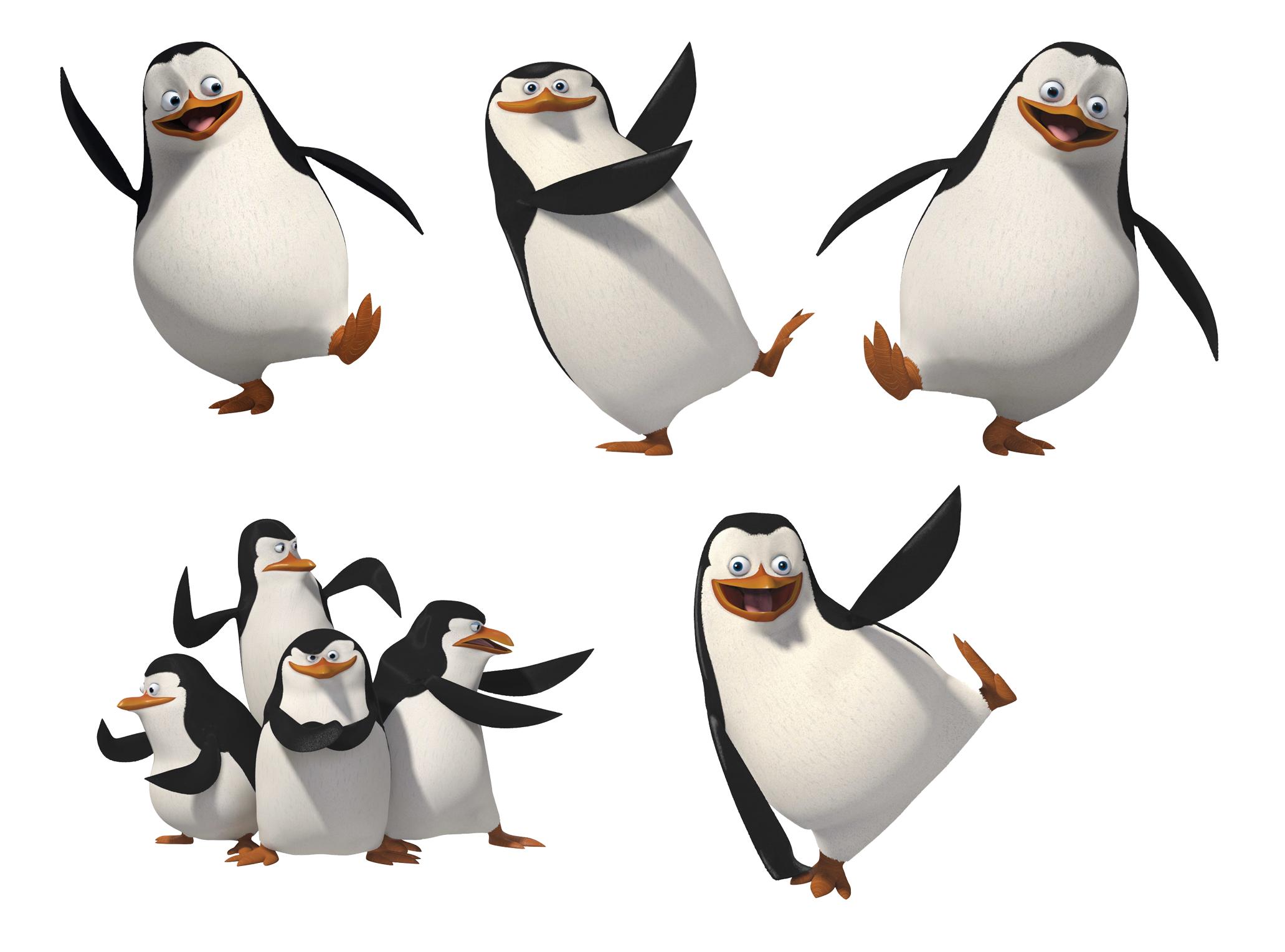 клипарт, скачать фото обои для рабочего стола, пингвины