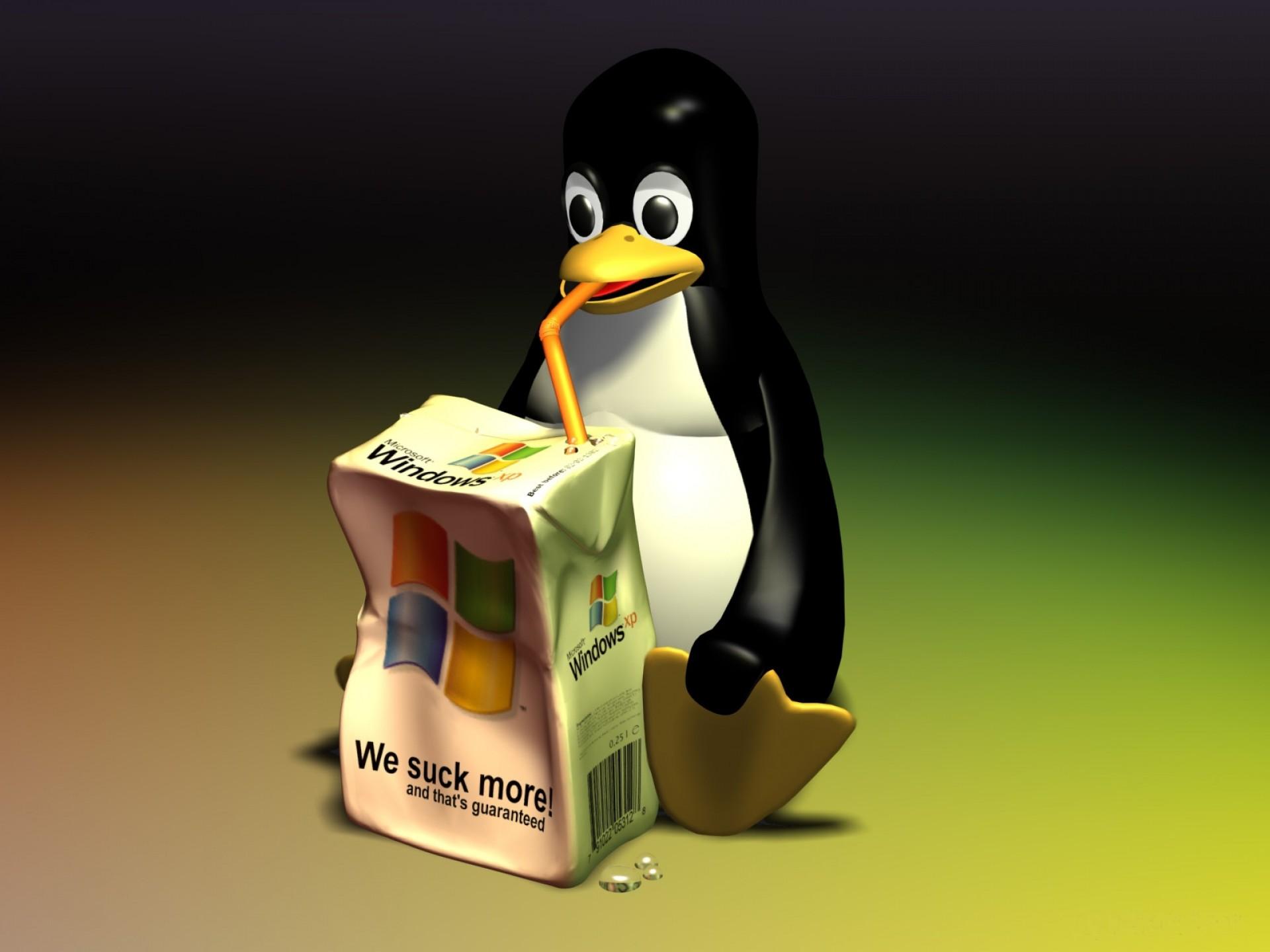 Linux puingvin, скачать фото, обои для рабочего стола, Линукс, Windows