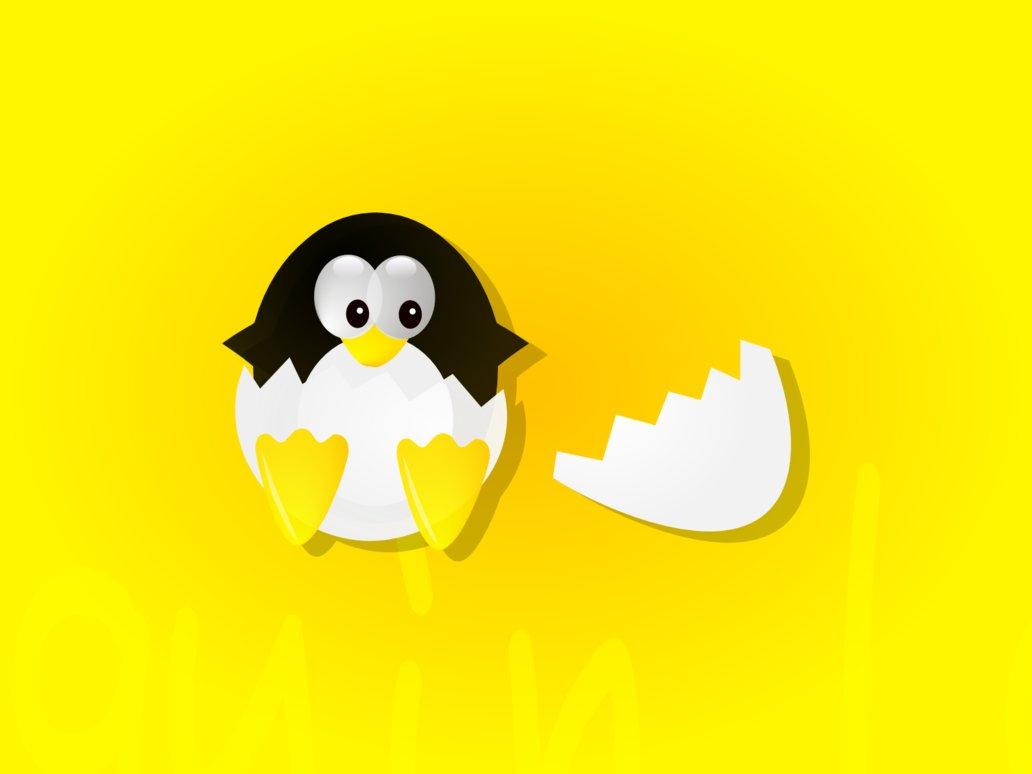 yellow wallpapers, скачать фото, обои для рабочего стола, пингвин вылупляется из яйца