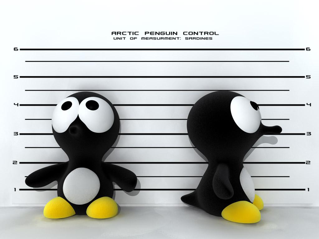 пингвин, рост, фас профиль, фото, обои для рабочего стола