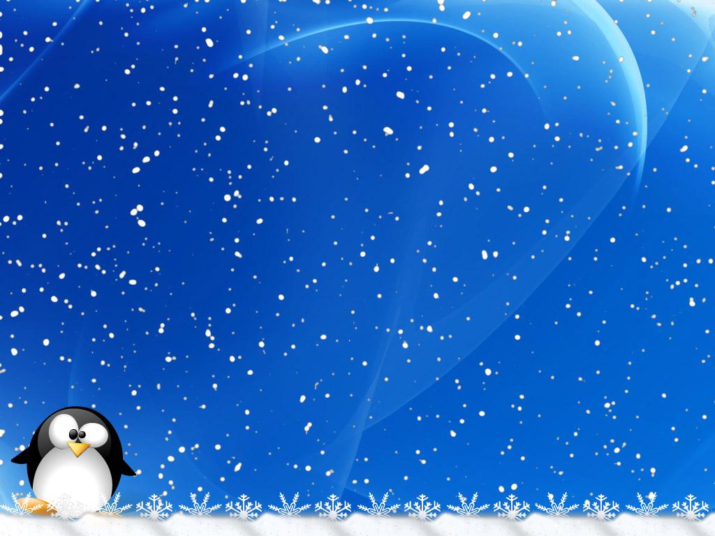 пингвин, снег, фото, скачать обои для рабочего стола, зима