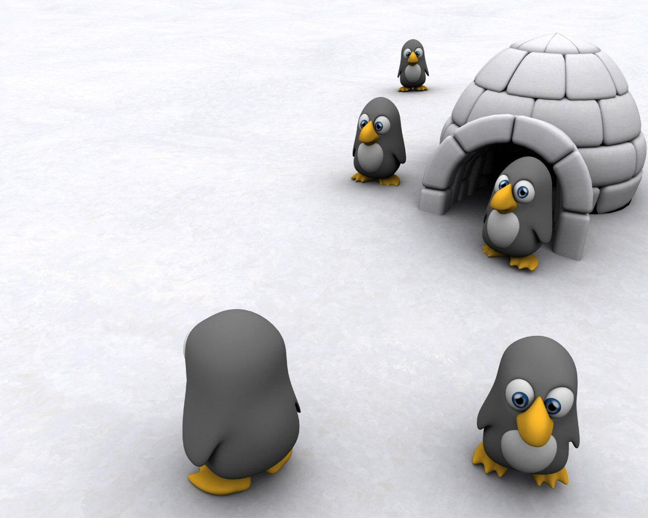 пингвины в домике изо льда, обои для рабочего стола