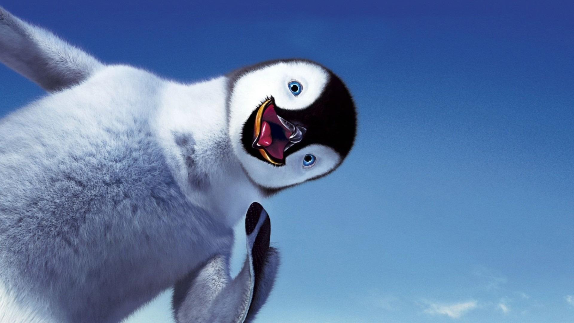 Фото, пингвин на фоне неба, обои для рабочего стола