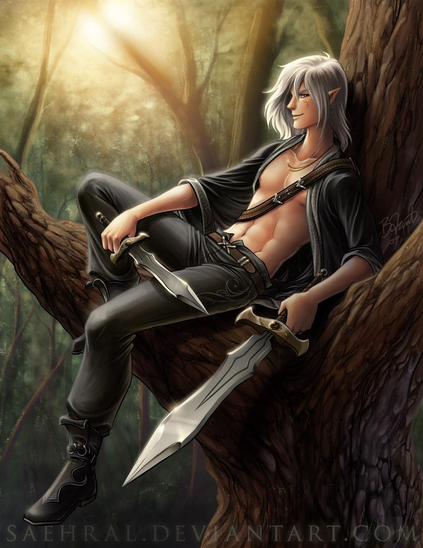 воин эльф с мечом и кинжалом, скачать фото, обои для рабочего стола