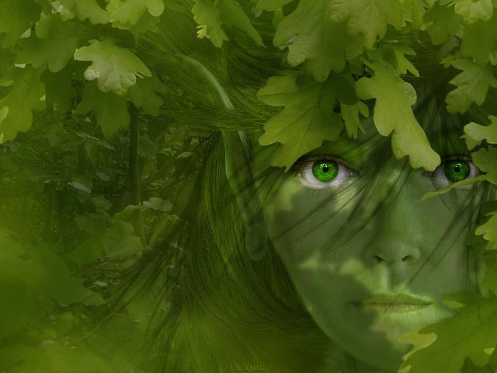 девушка дерефо, эльф, tree elf, лесной эльф, эльфийка, скачать обои для рабочего стола