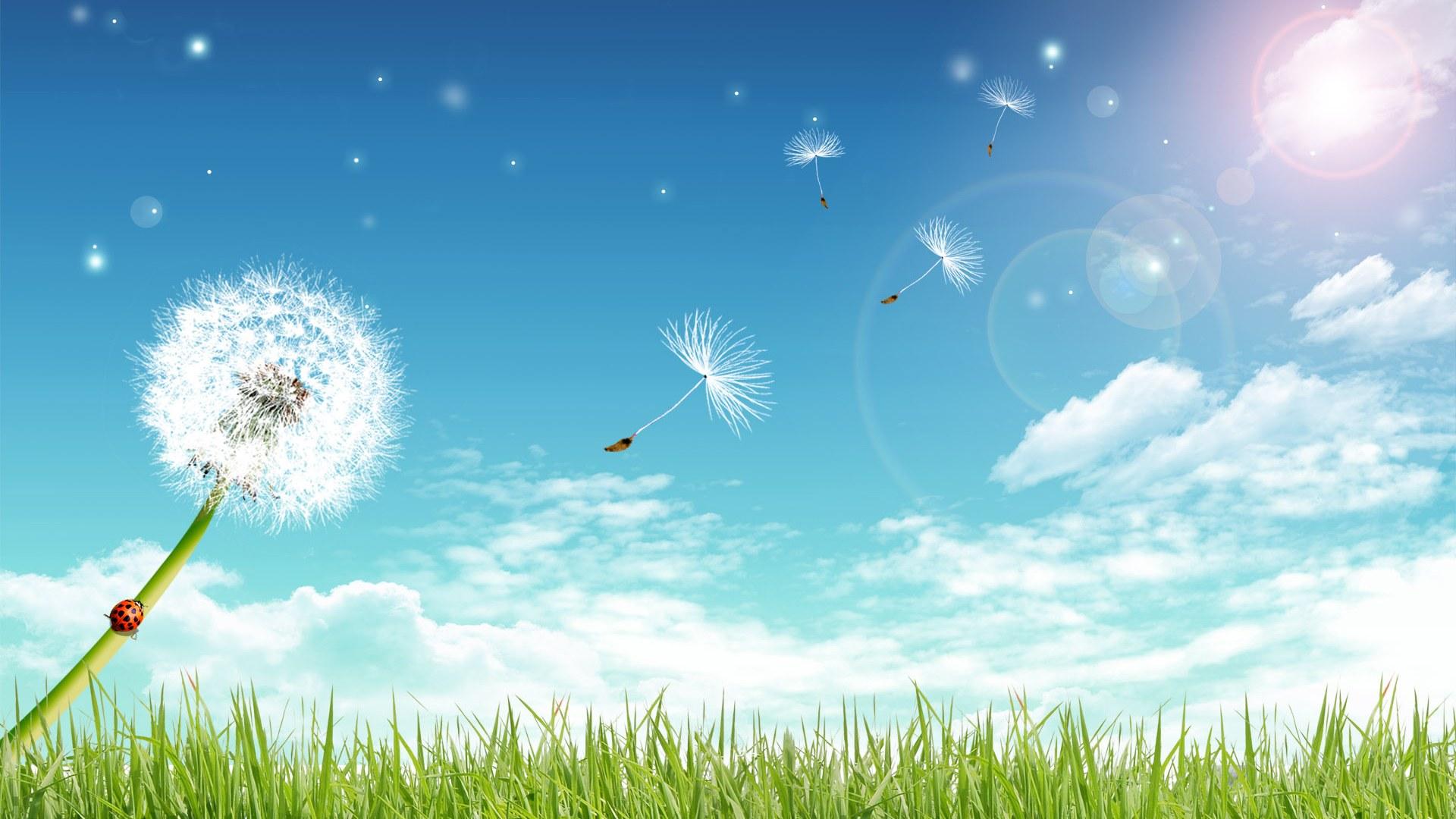 Небо солнце облака скачать обои для