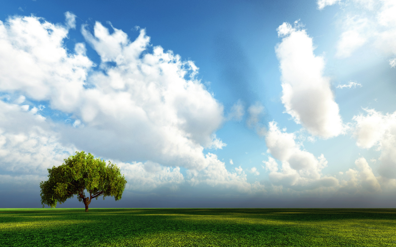 трава, дерево, небо, облака скачать фото, для рабочего стола