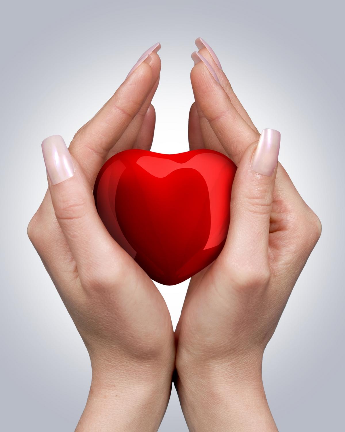 красивое красное сердце в руках, скачать фото, обои для рабочего стола, heart