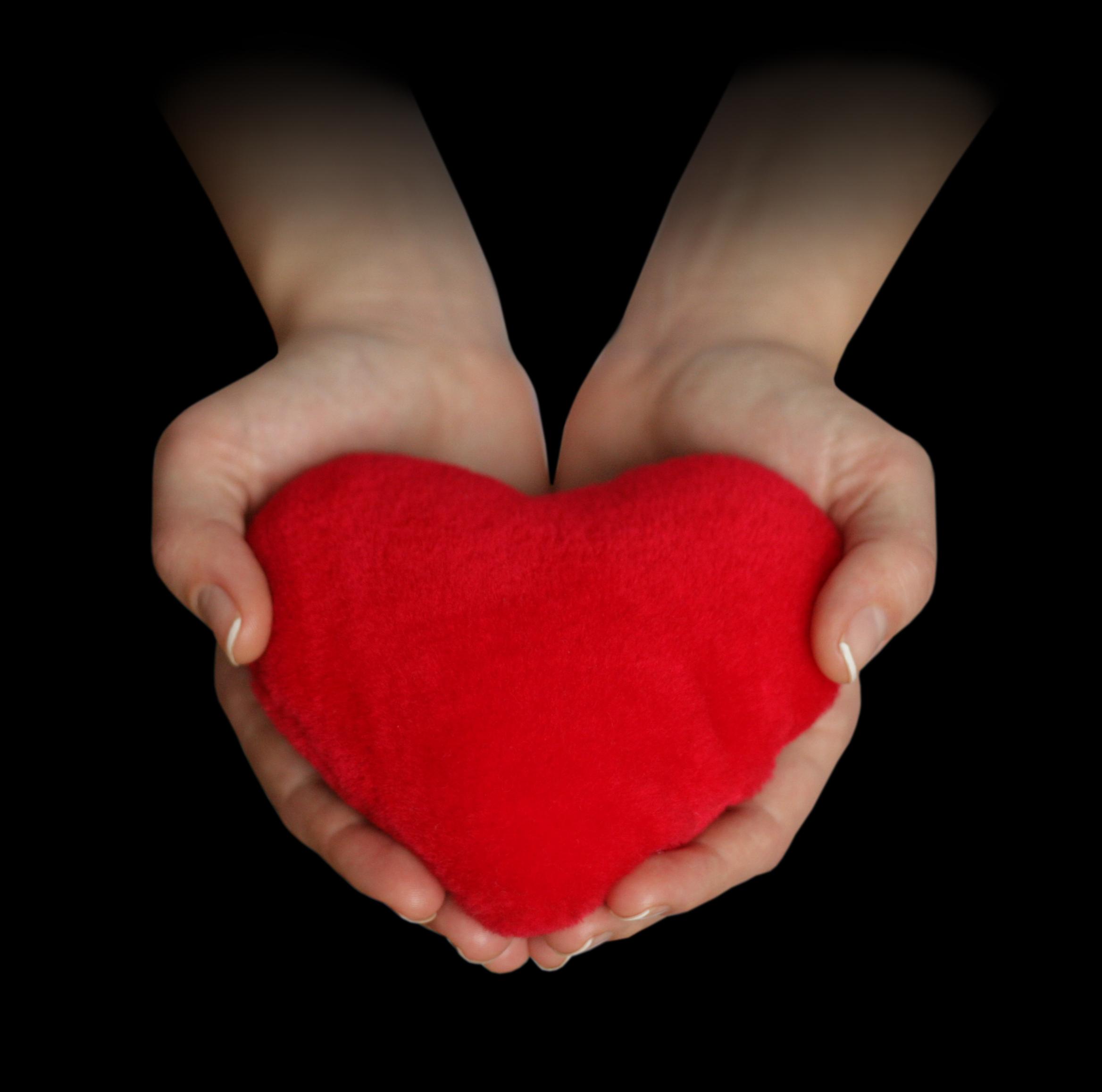 большое красное сердце в руках, heart in hands, скачать фото, обои на рабочий стол
