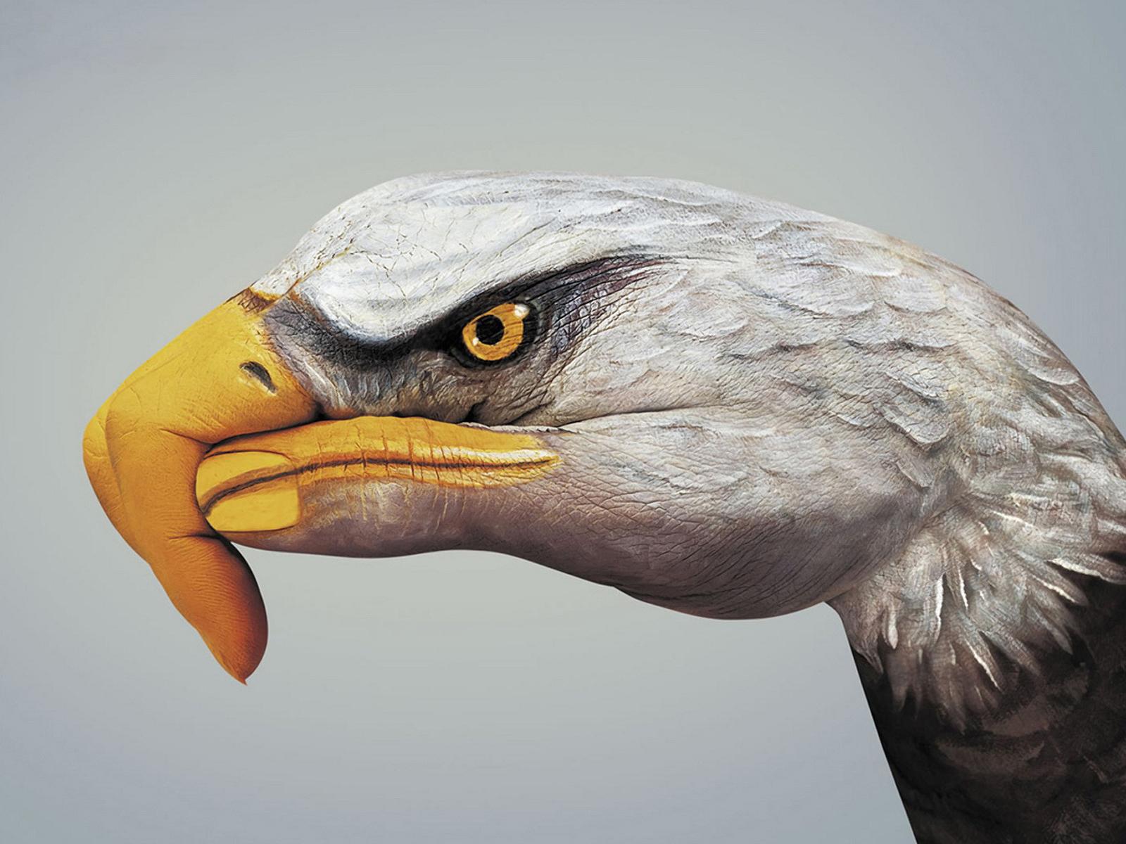 рука в форме орла, орел, фото, обои для рабочего стола