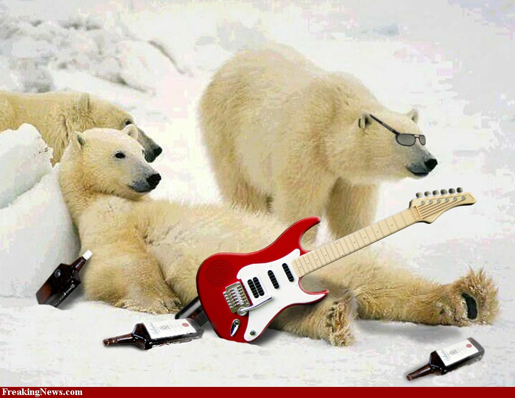 Белые медведи с гитарами лежат на снегу, скачать фото, обои для рабочего стола