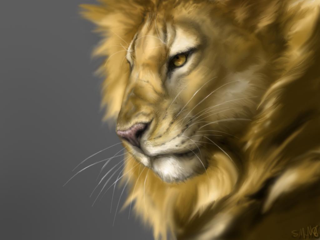 рисунок, лев, фото льва