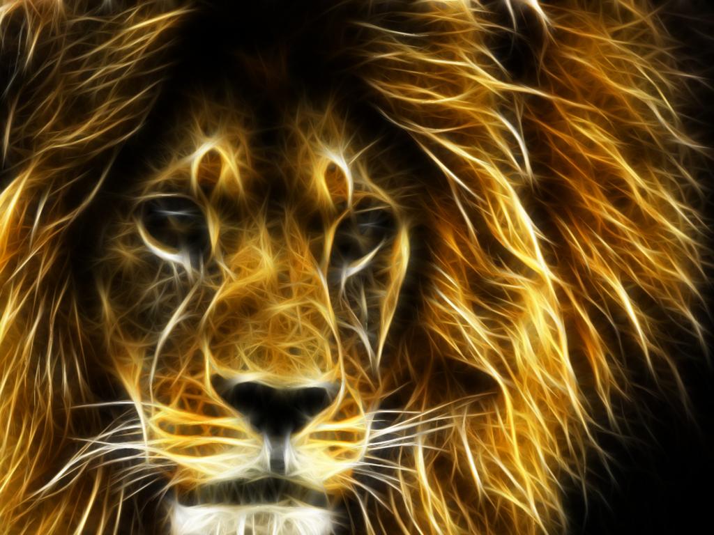 рисунок льва, лев, скачать фото, обои для рабочего стола