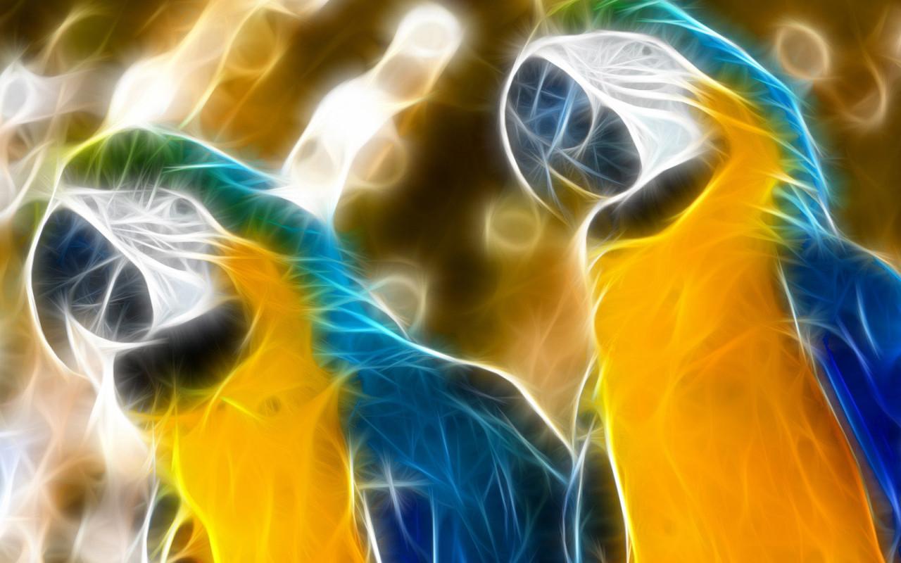 красивые попугаи, фото, обои для рабочего стола, parrots