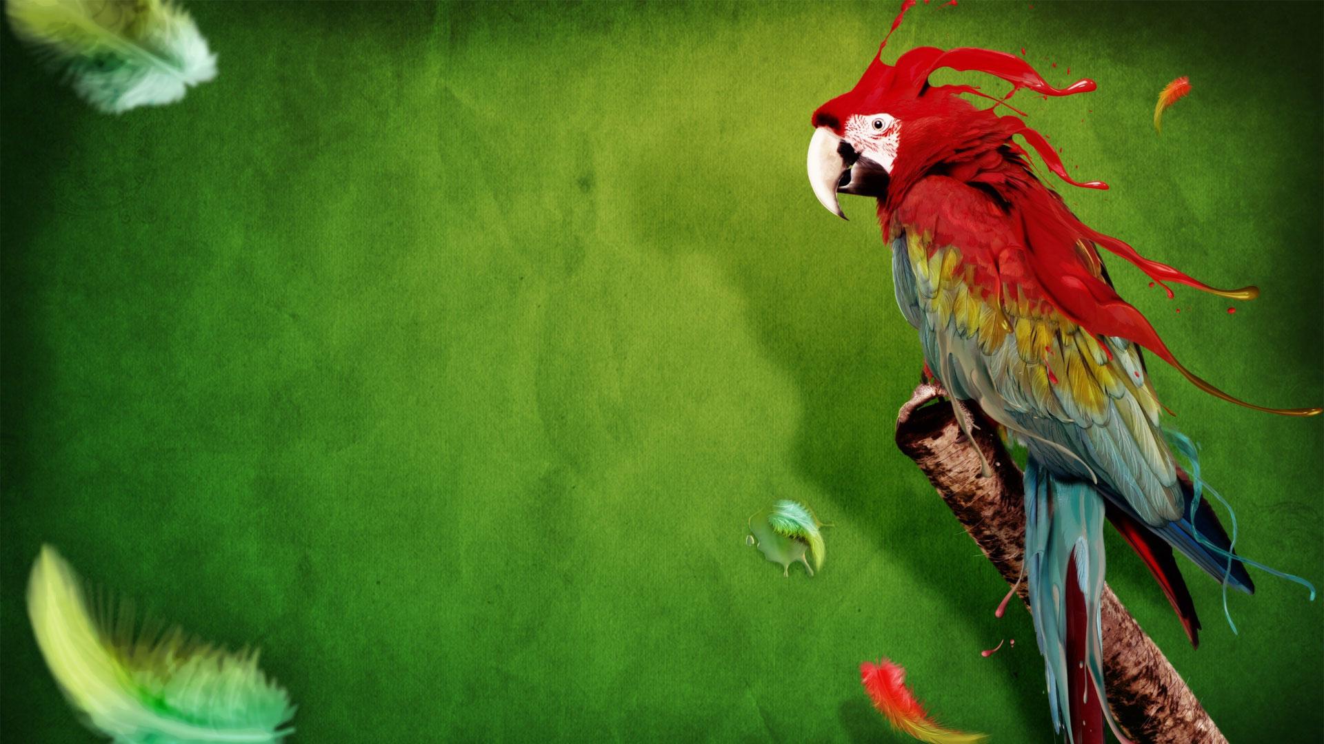 зеленые обои для рабочего стола, green wallpaper, красный попугай на зеленом фоне