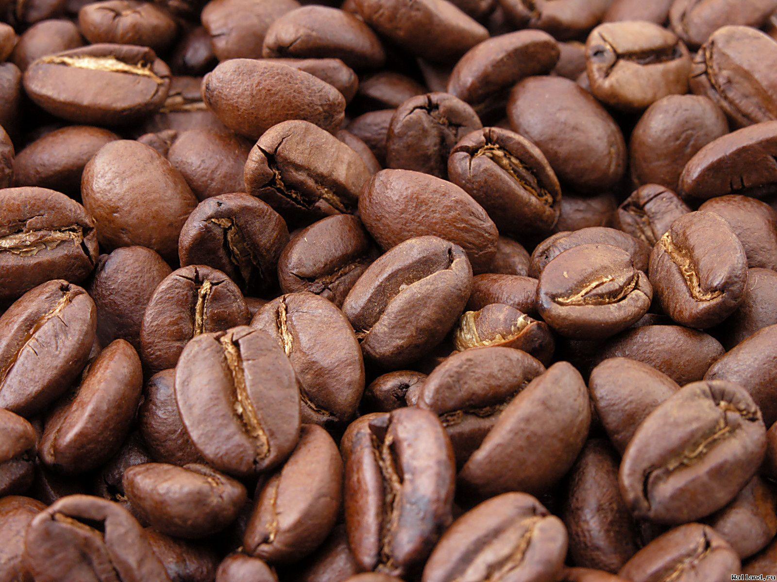 фото, кофе, кофейные зерна, скачать бесплатно