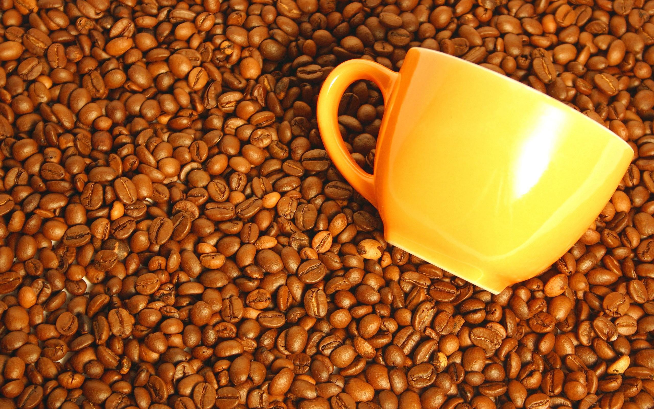 Обои кофейных оттенков - c