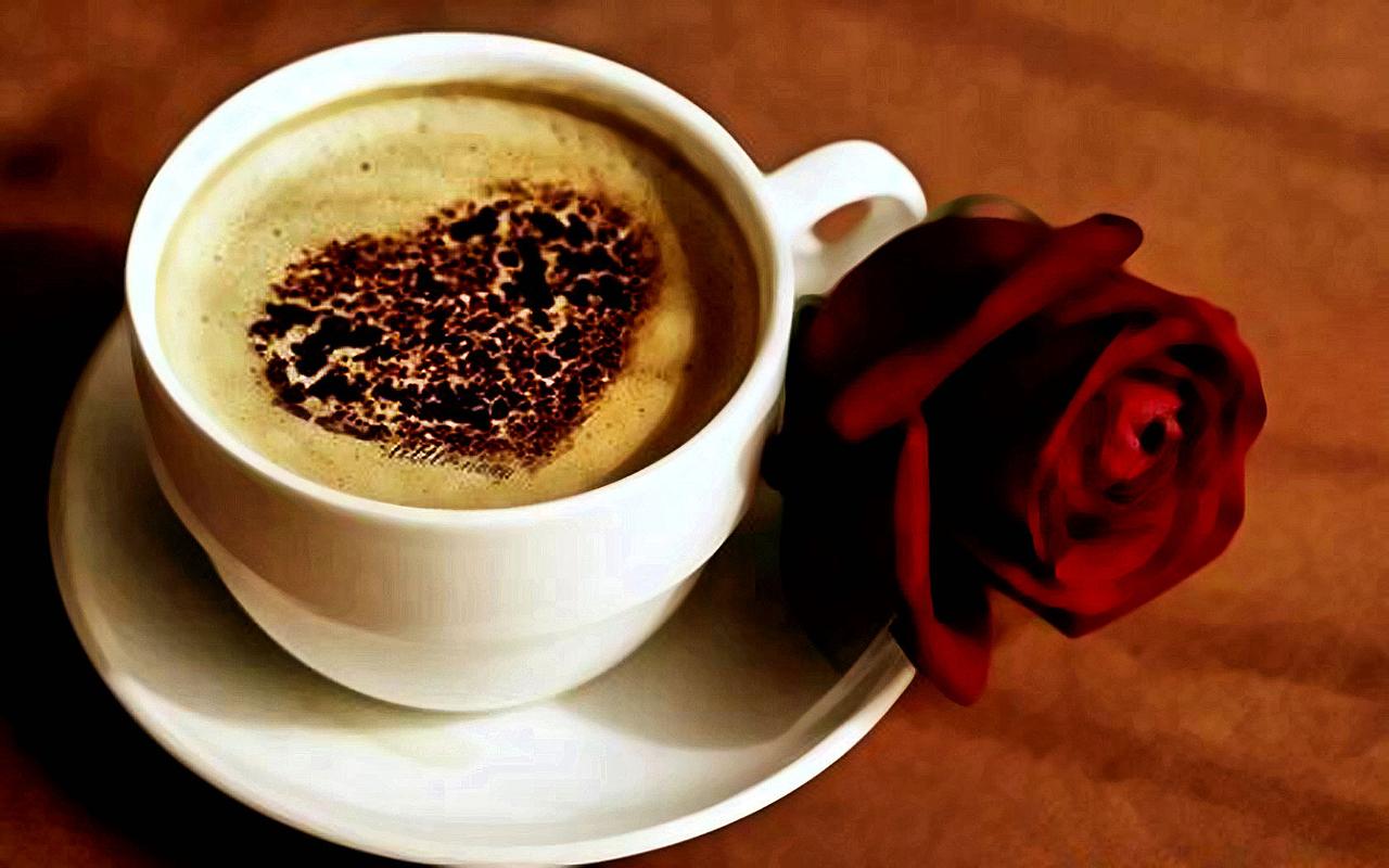 cofee with milk, кофе со сливками, скачать фото, роза