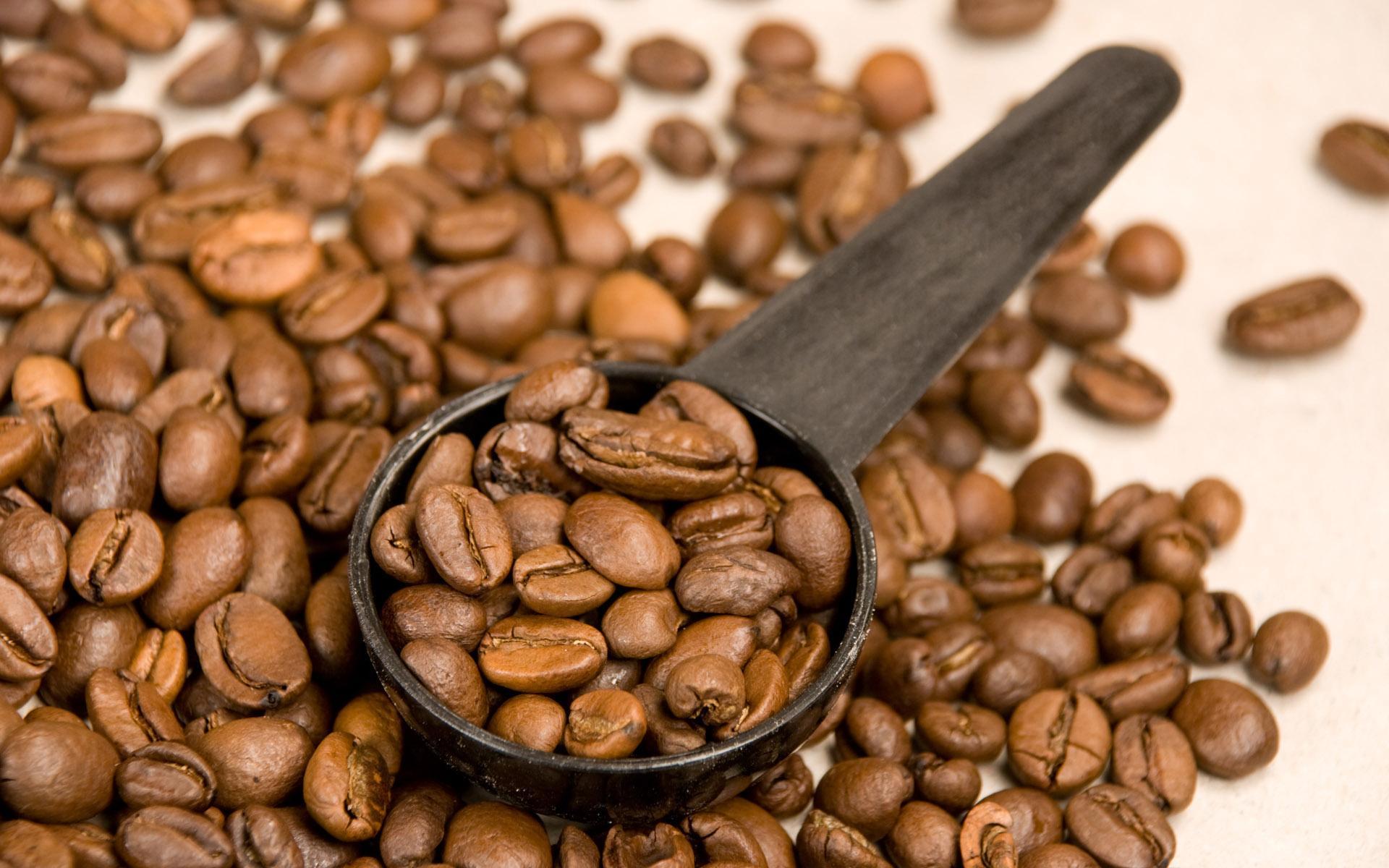кофейные зерна и ложка, скачать фото, обои для рабочего стола