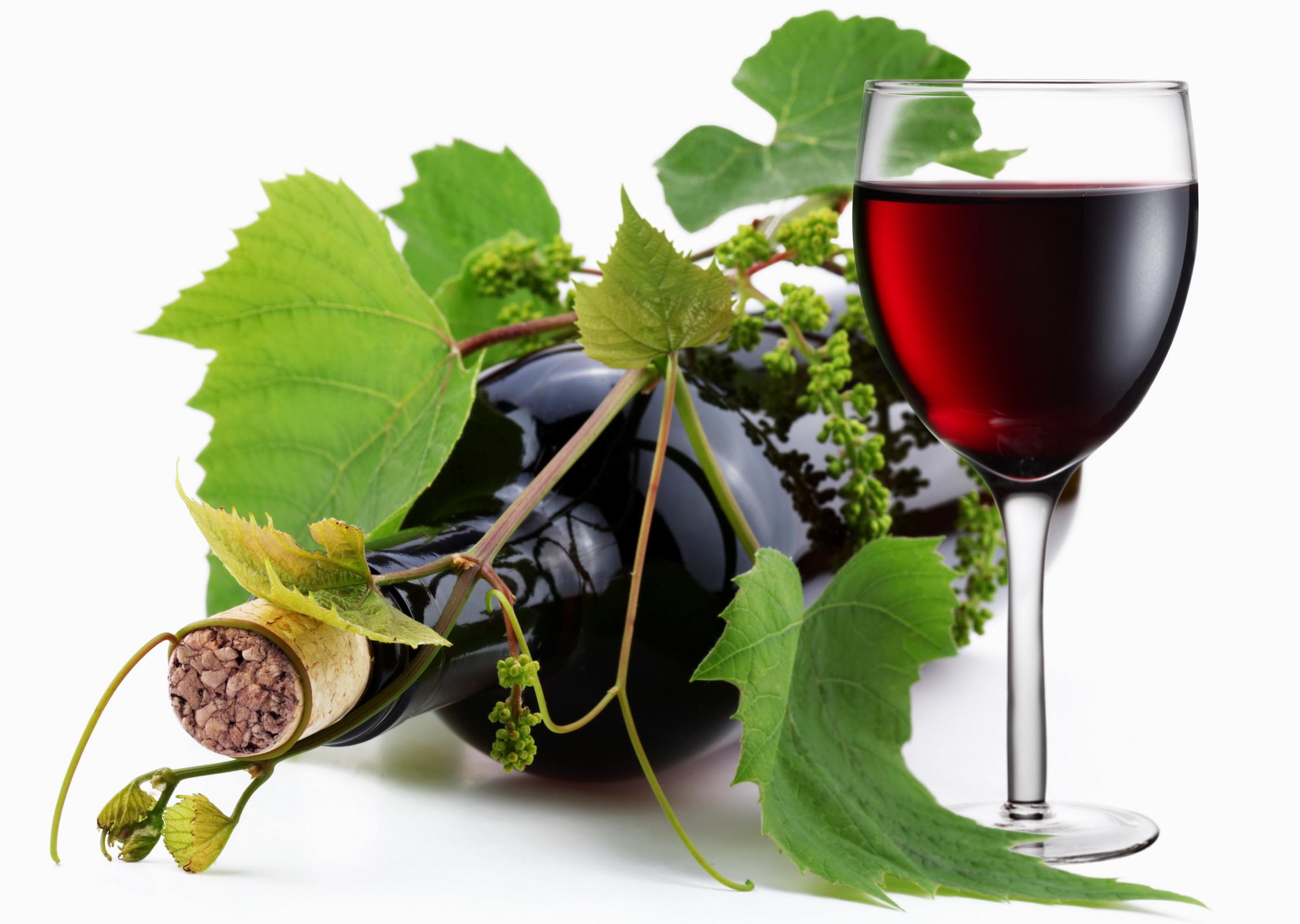 вино из винограда, скачать фото, обои для рабочего стола, рюмка с вином