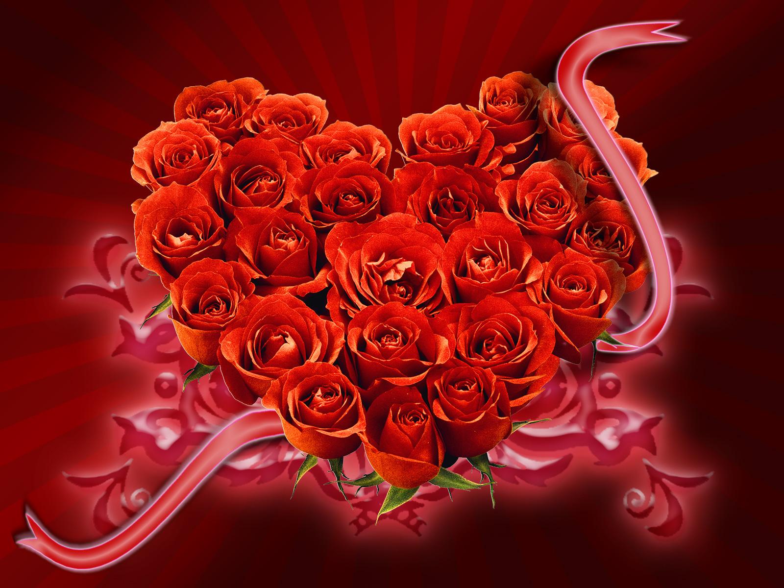 много красных роз, сердце из роз, скачать фото, обои на рабочий стол