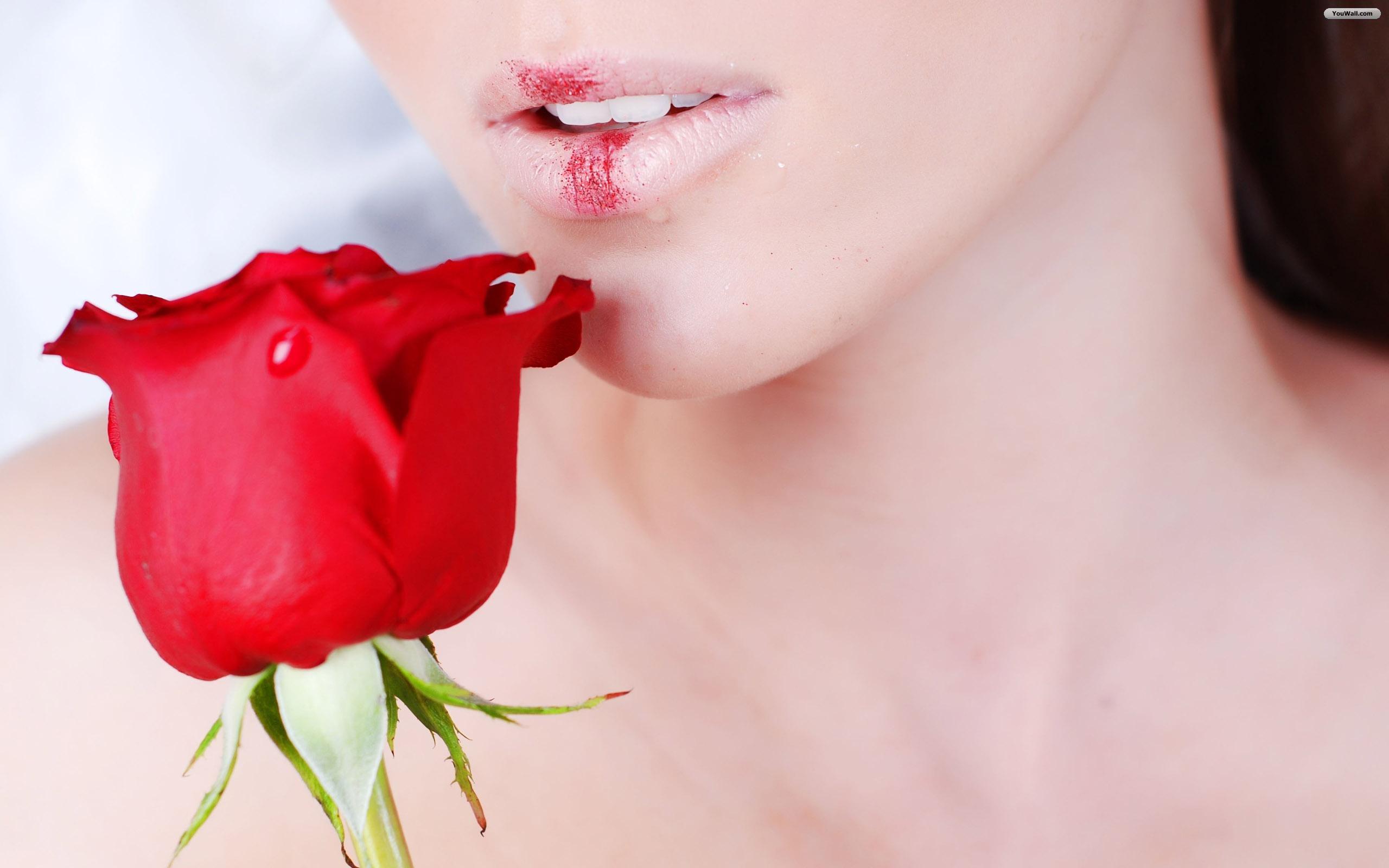 девушка целует розу, губы, красная роза, скачать фото