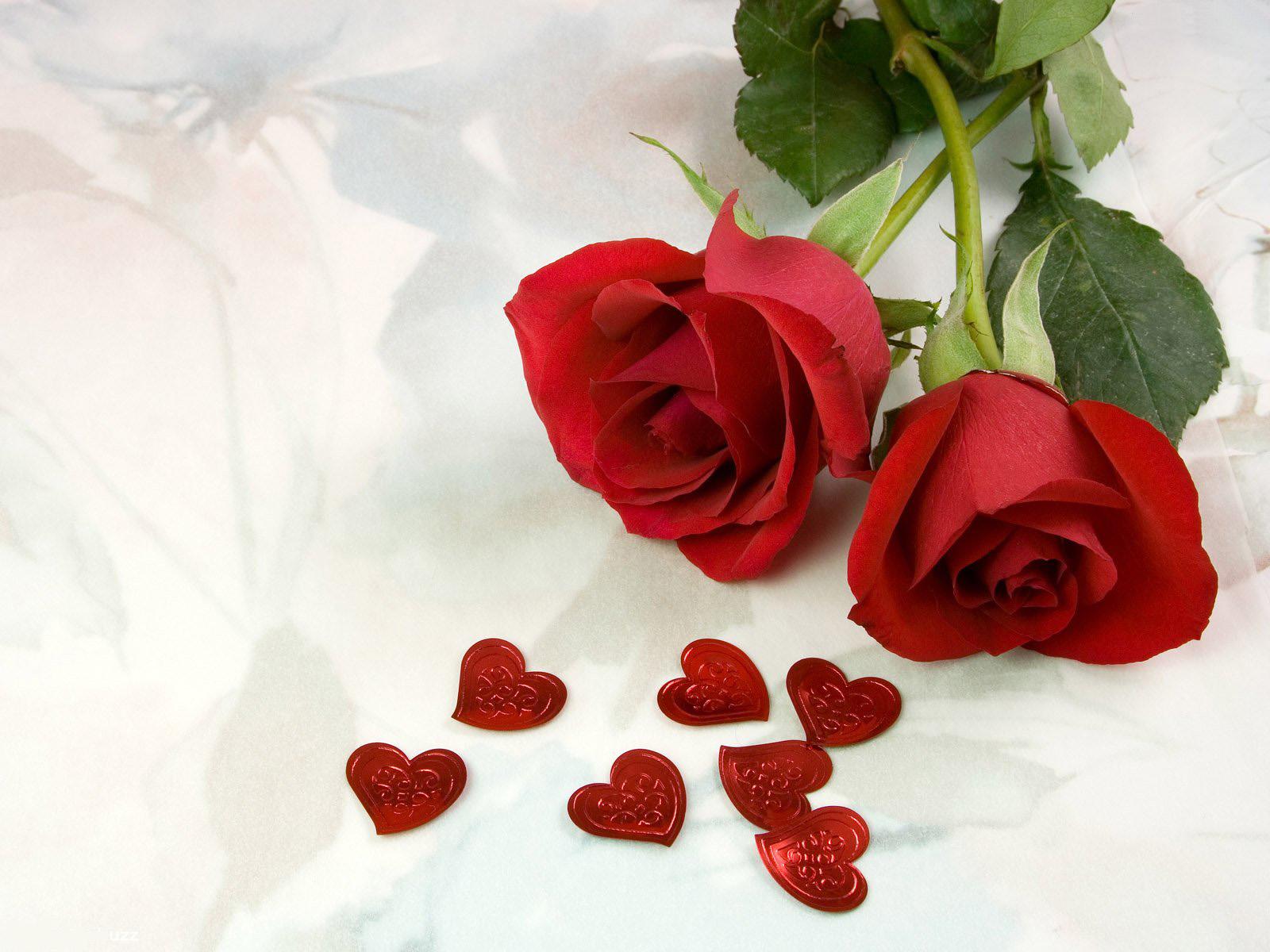 две красных розы и маленькие сердечки, скачать фото