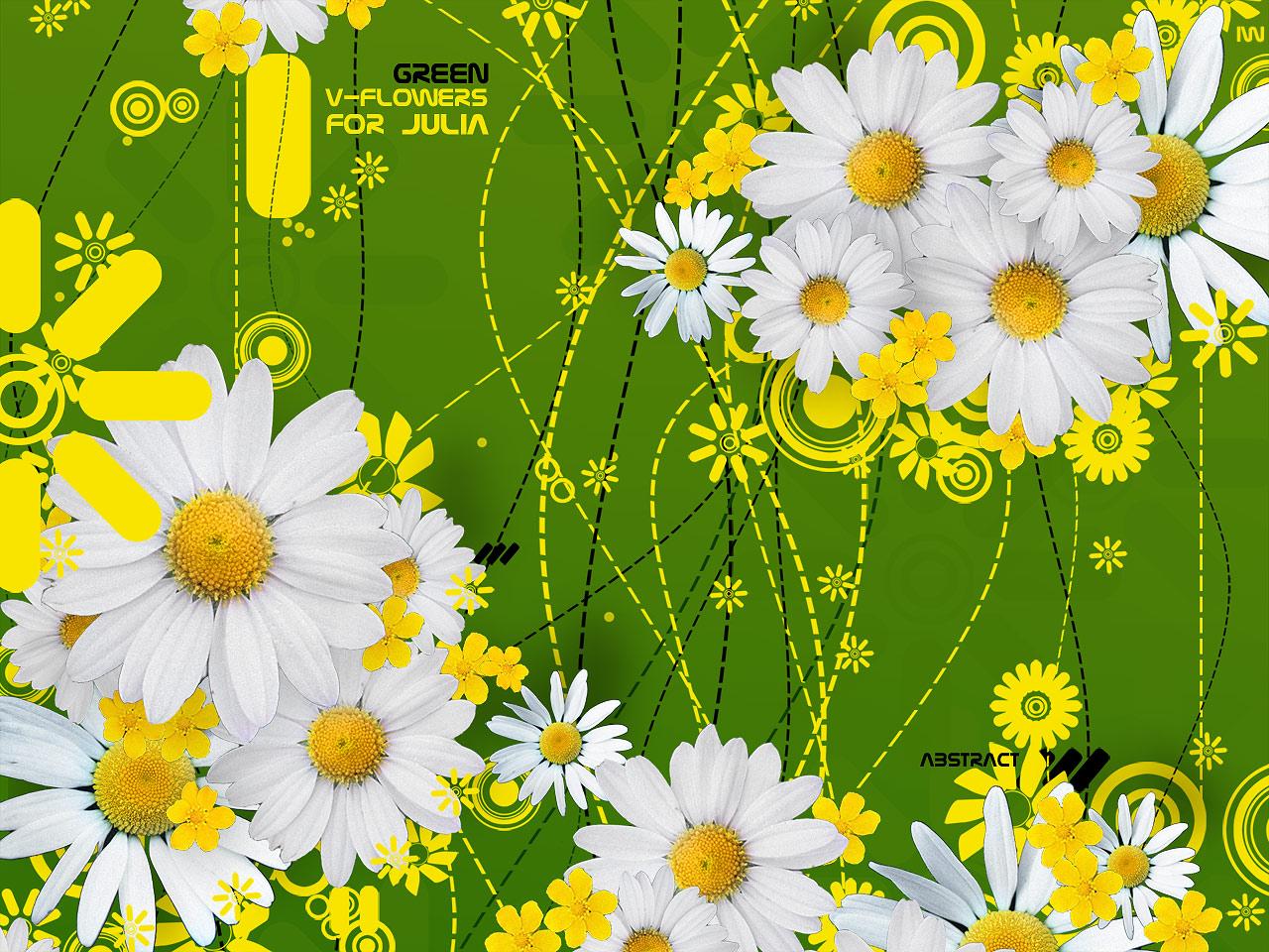 обои для рабочего стола, green wallpaper, flowers, ромашки, скачать фото