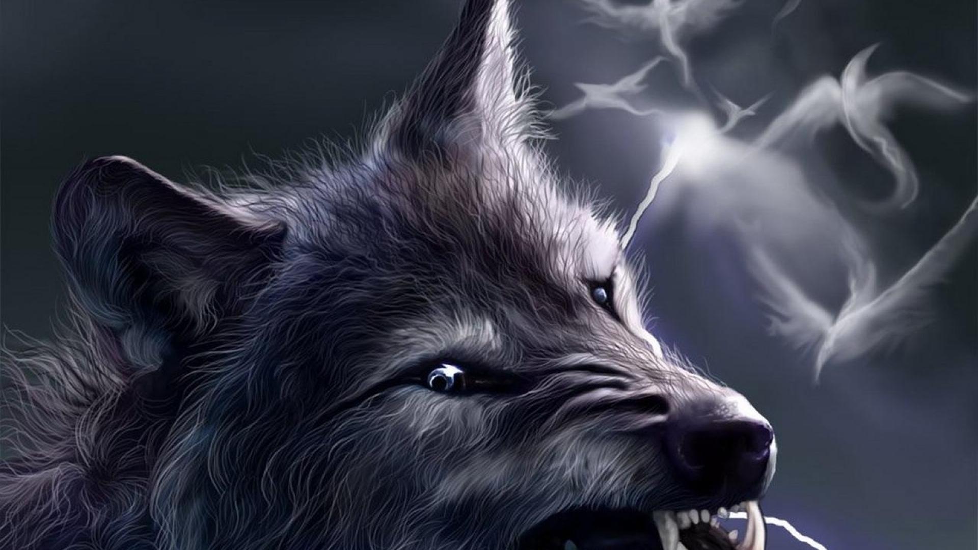 серый волк, фото, скачтаь фото