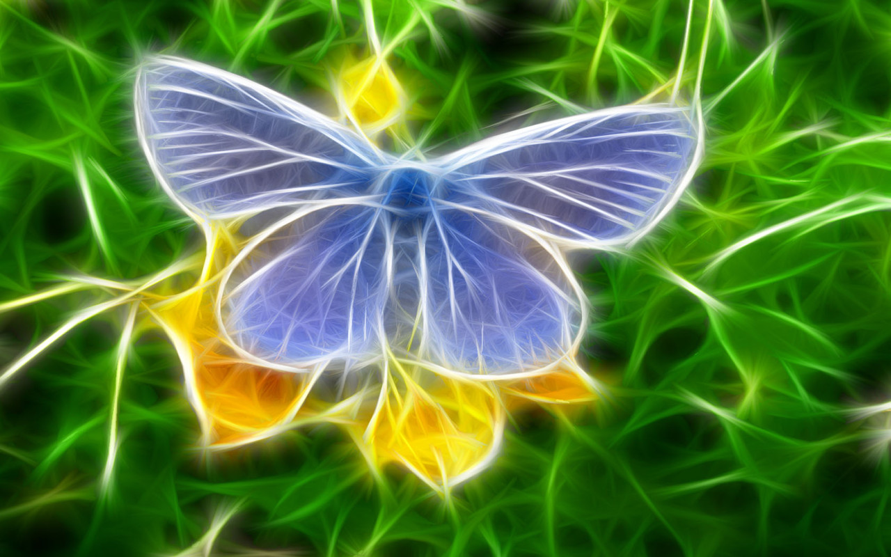 синяя бабочка сидит на цветке, скачать фото, обои для рабочего стола