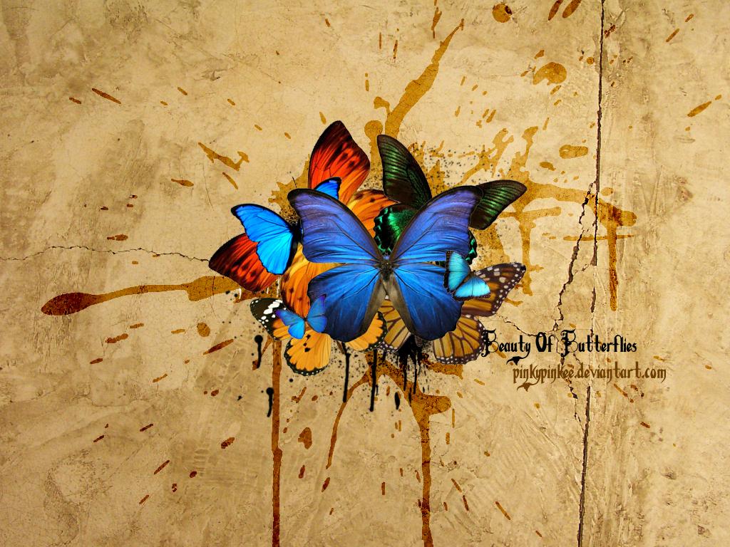 бабочки на фоне бумаги, скачать обои для рабочего стола