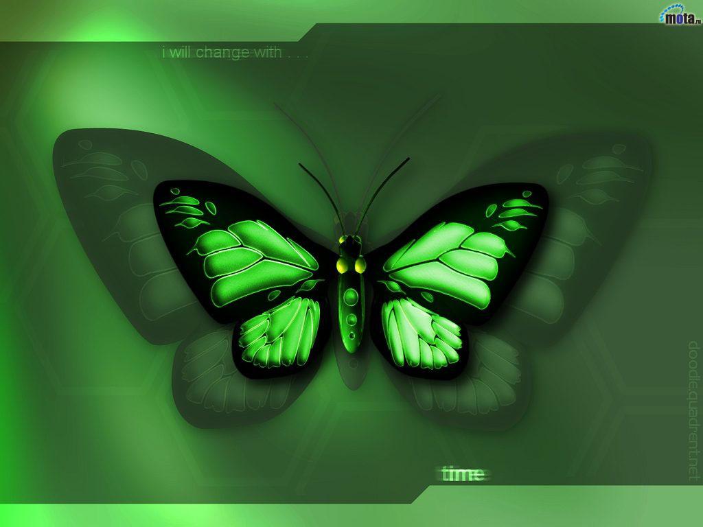 зеленая бабочка, green butterfly, скачать фото, обои на рабосий стол
