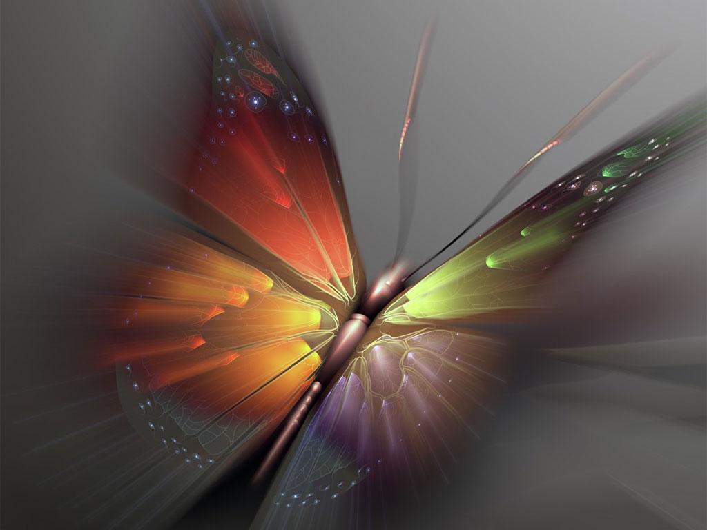 радужная бабочка на сером фоне, скачать фото