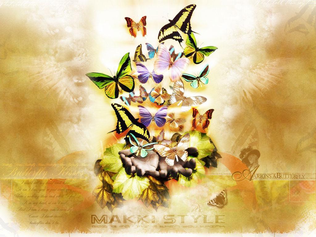 butterfly wallpaper, скачать фото, обои для рабочего стола, бабочки