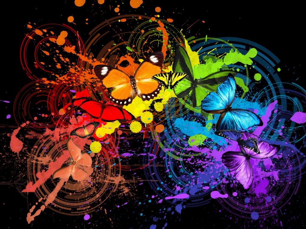 разноцветные бабочки, butterfly wallpaper, скачать фото, обои для рабочего стола, бабочки