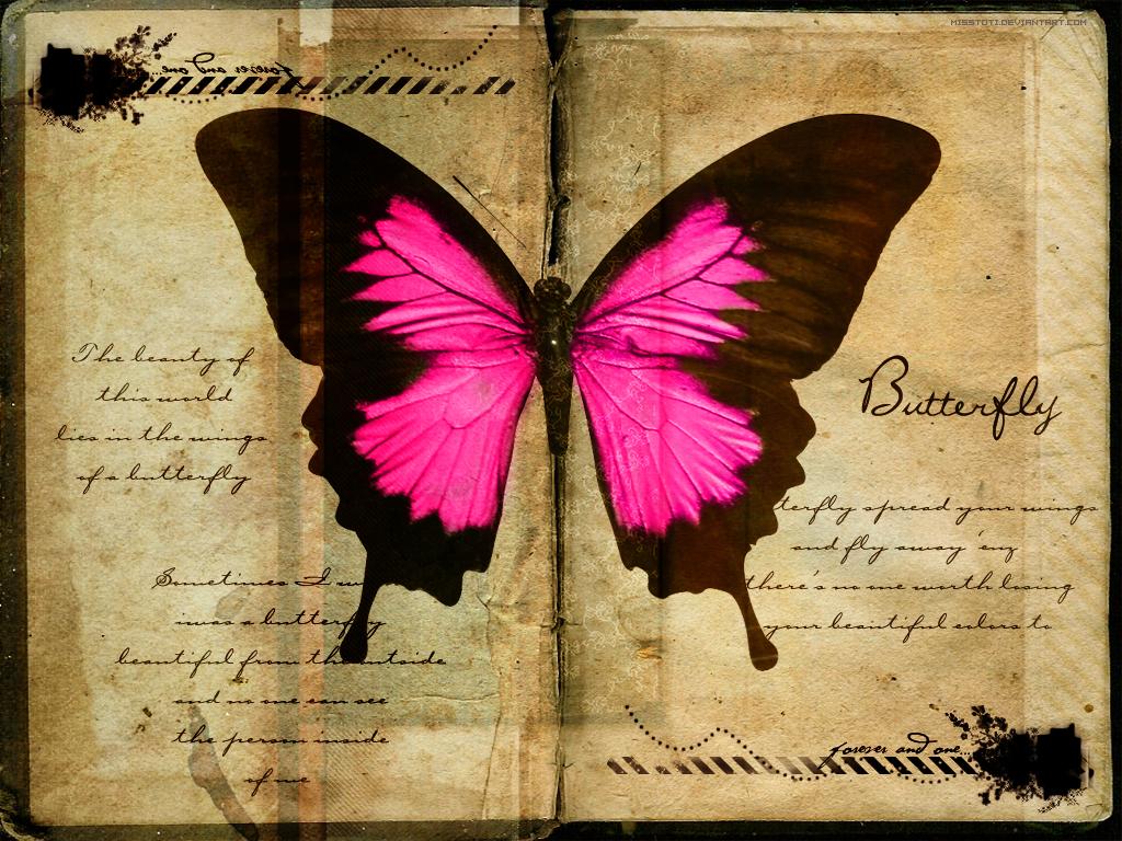 розовая япкая бабочка на фоне старой книги, скачать фото, обои для рабочего стола