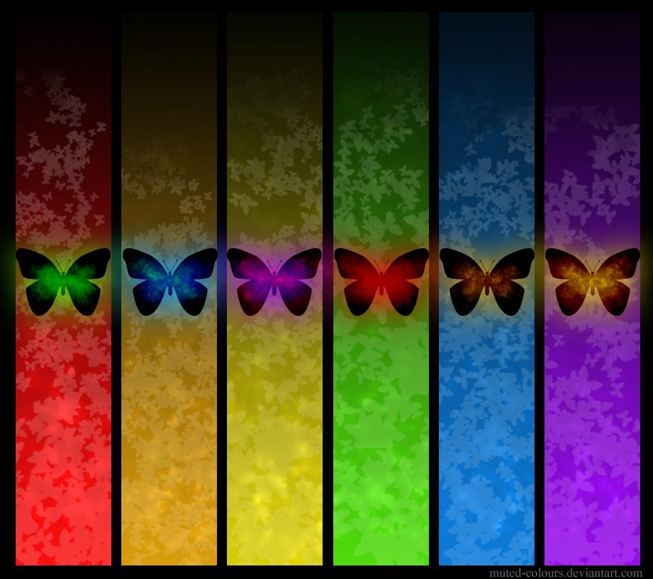 бабочки всех цветов радуги, скачать фото, обои для рабочего стола