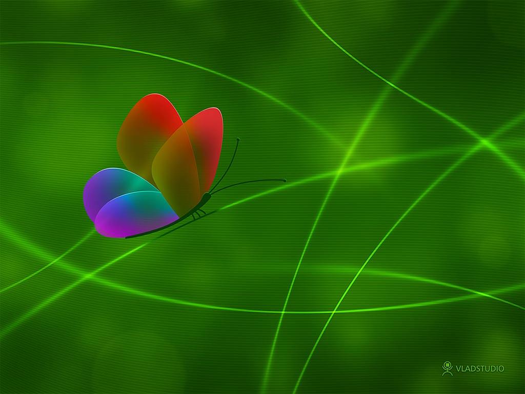 радужная бабочк ана зеленом фоне, скачать фото