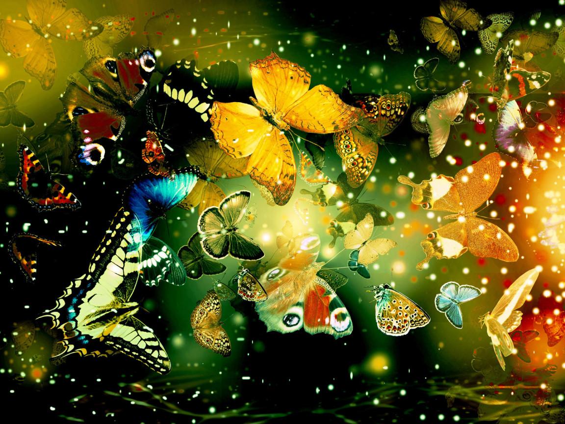 обои для рабочего стола, много бабочек на разноцветном фоне, скачать фото