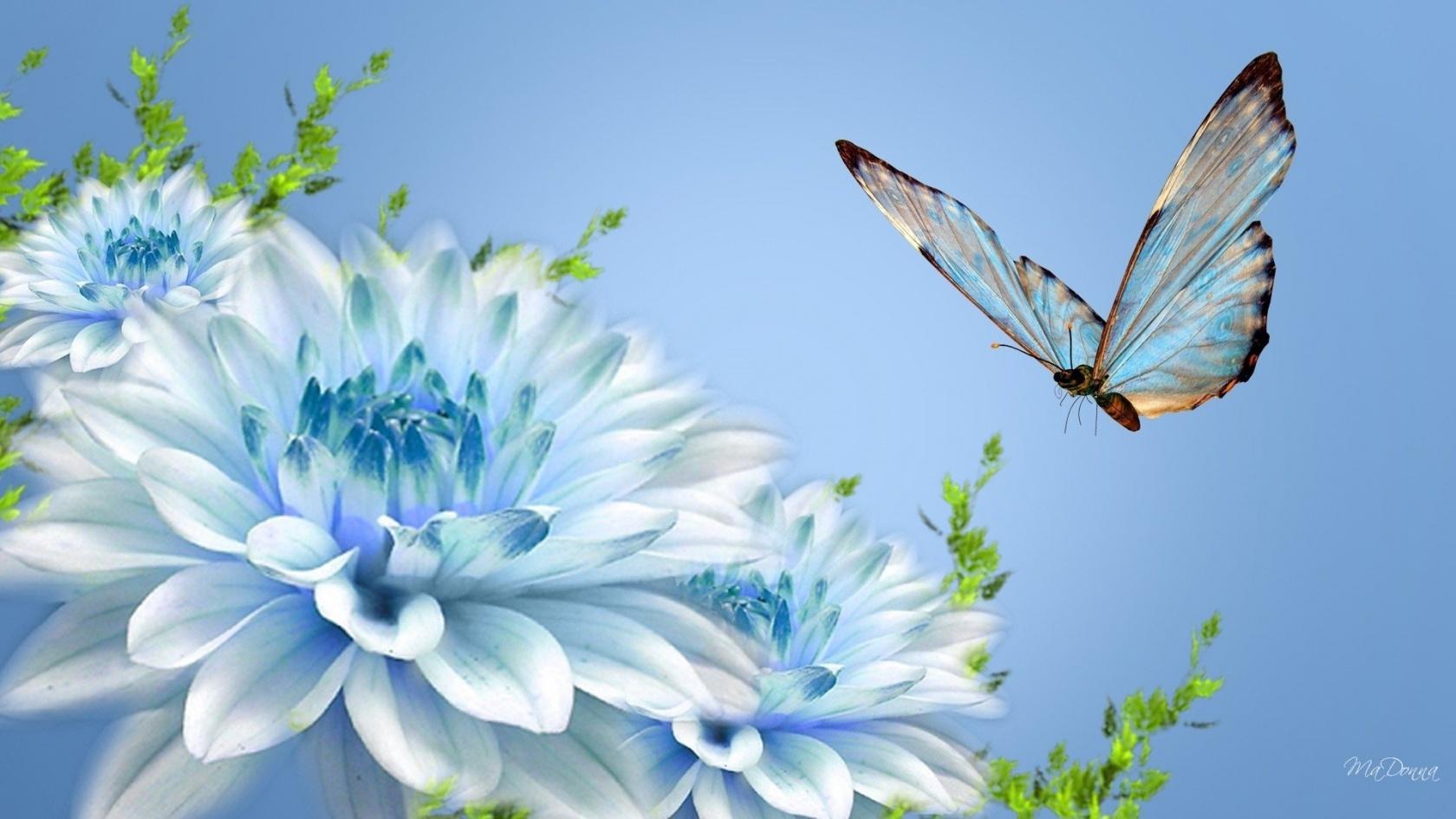бабочка летит на голубой цветок на фоне неба, скачать фото, обои для рабочего стола
