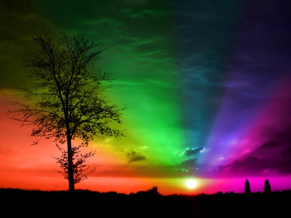 закат, дерево, радуга, скачать фото, обои для рабочего стола