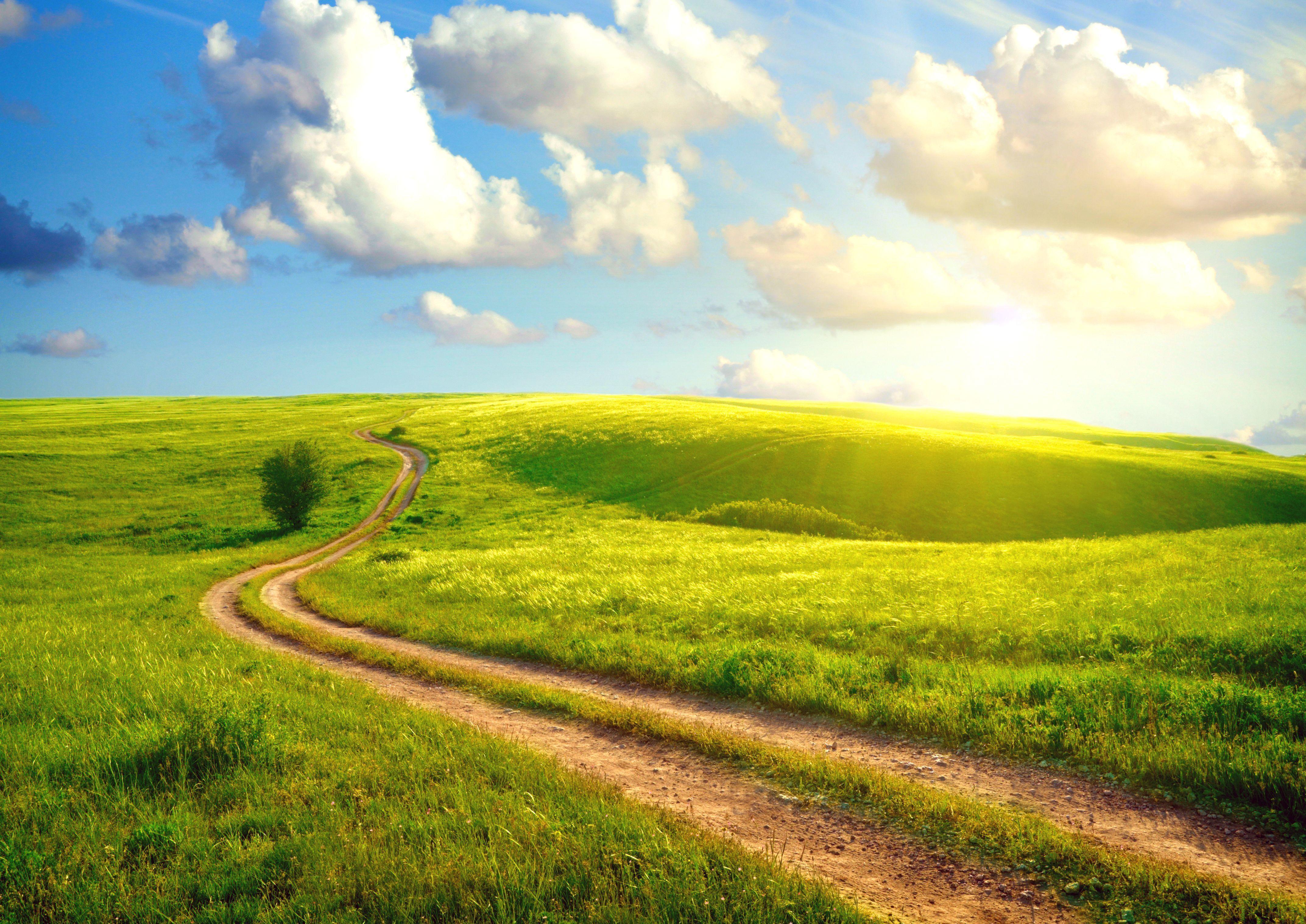 грунтовая дорога через поля, скачать красивое фото, обои на рабочий стол