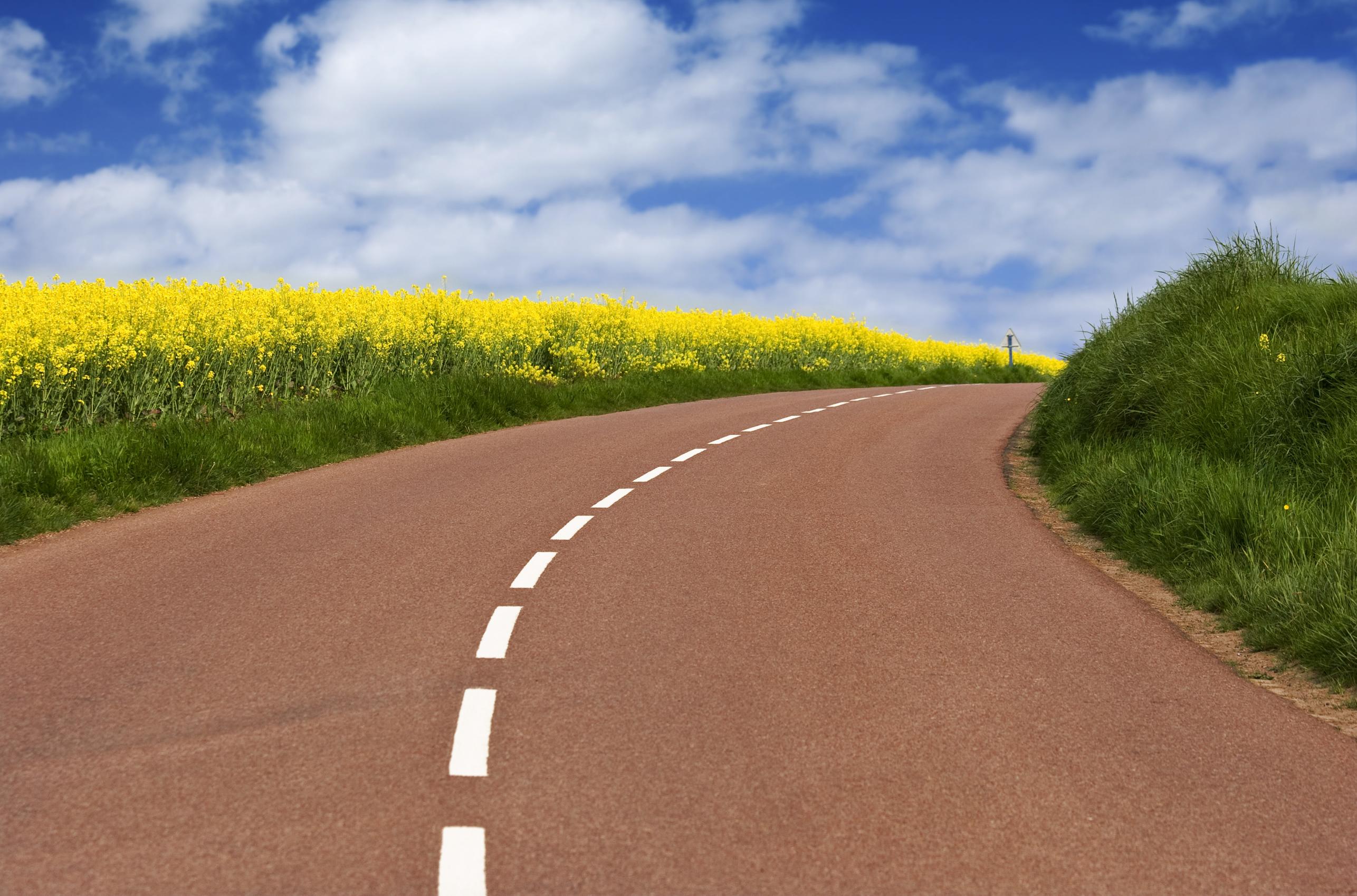 розоватый асфальт, розовая дорога, дорожная разметка, шоссе, скачать фото, обои для рабочего стола